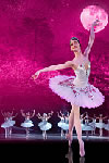 Russian state ballet sleeping beauty